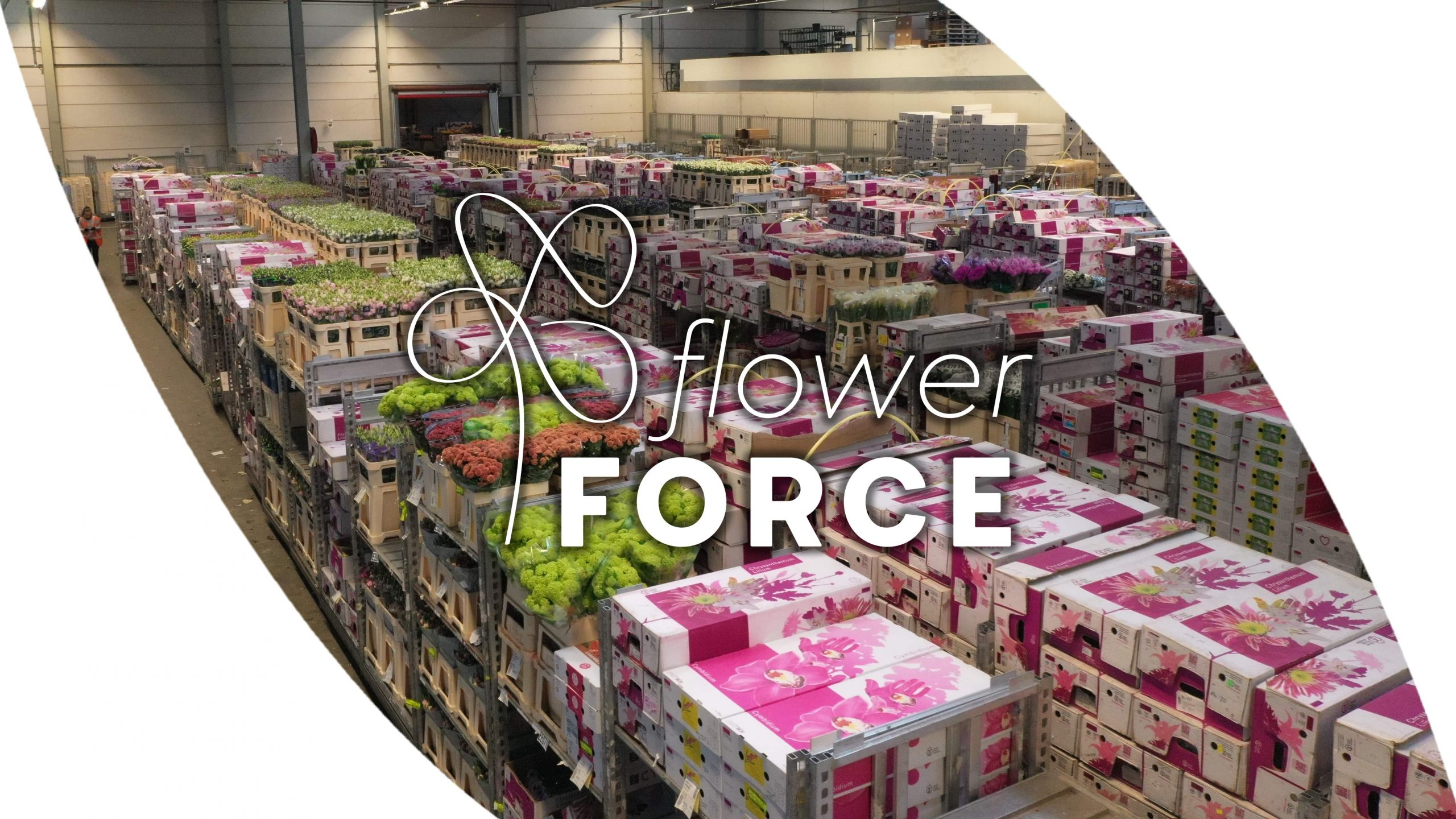 Bedrijfsvideo FlowerForce